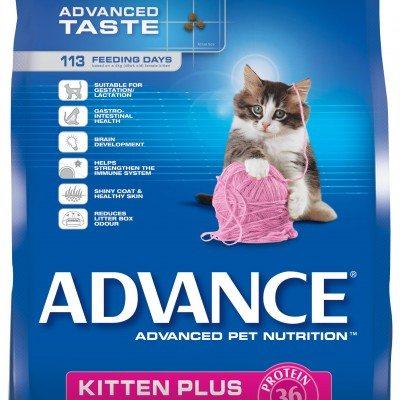 2011_004_ADV_Kitten_BAG_8kg_Ck_1224837_1.jpg