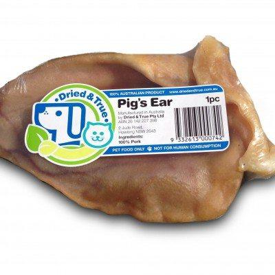 DT_pig_ear.jpg