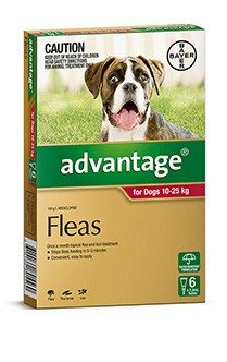 Dog Flea Worming Tick Treatments