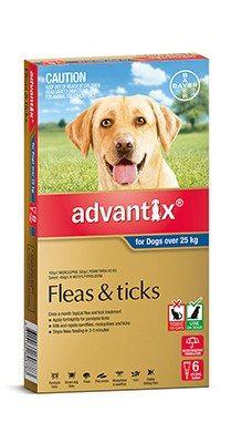advantix_dog_over_25kg_6pack.jpg