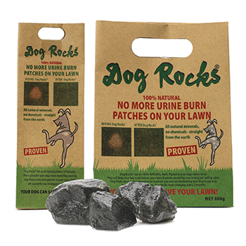dog-rocks-lge.png