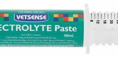 electrolyte_paste_cm_labds.jpg