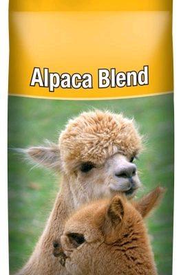 Alpaca blend