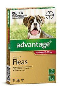 Dog Flea Worming Tick Treatments